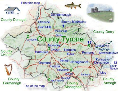 Read About Co Tyrone
